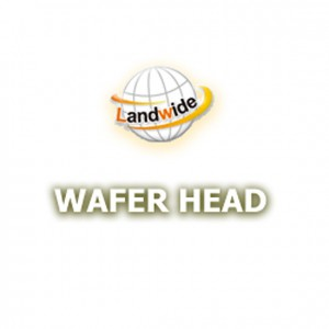 WAFER HEAD